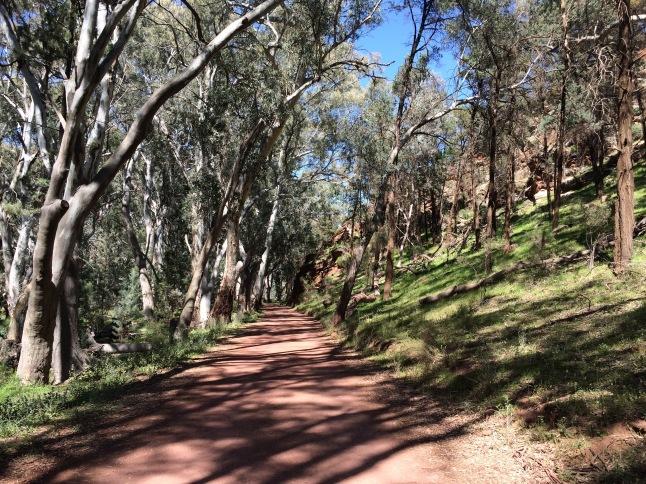 Flinders Range Park